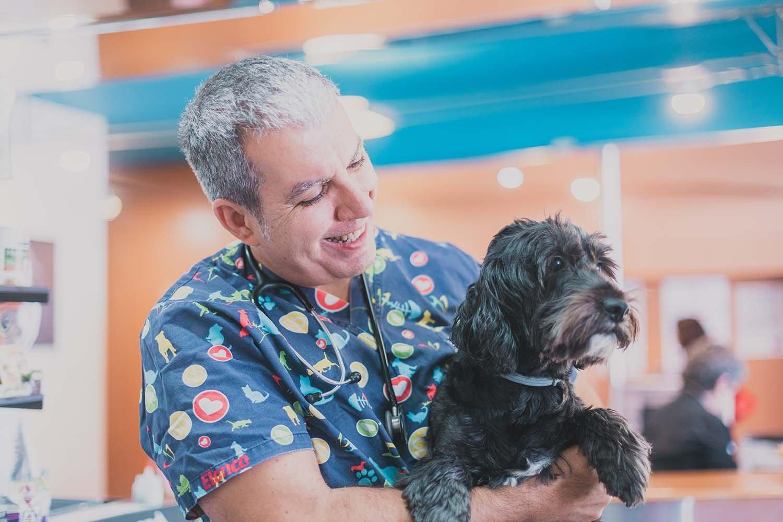 veterinario con perro en brazos